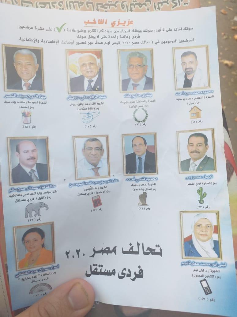 أسماء أعضاء قائمة مصر 2020