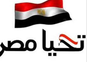 العبار صندوق تحيا مصر